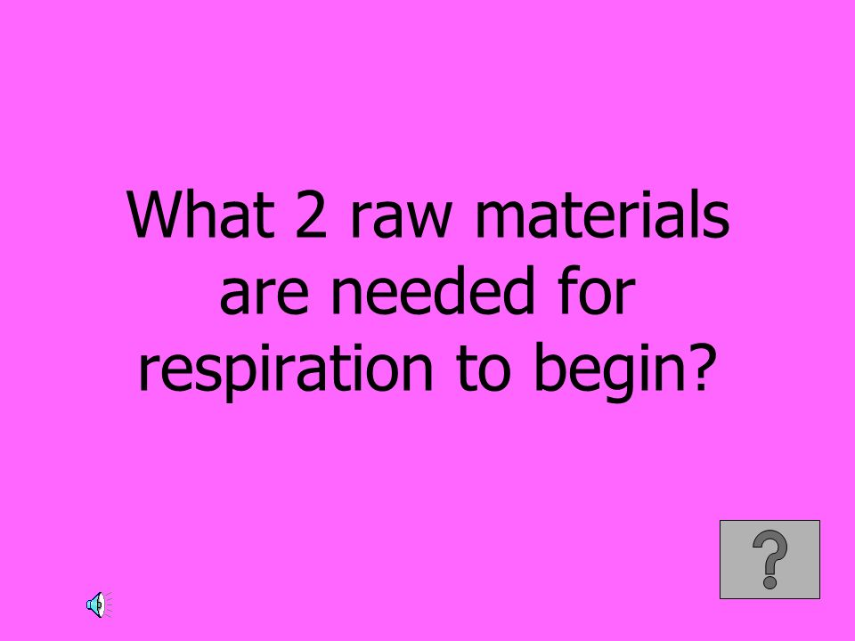 What 2 raw materials are needed for respiration to begin
