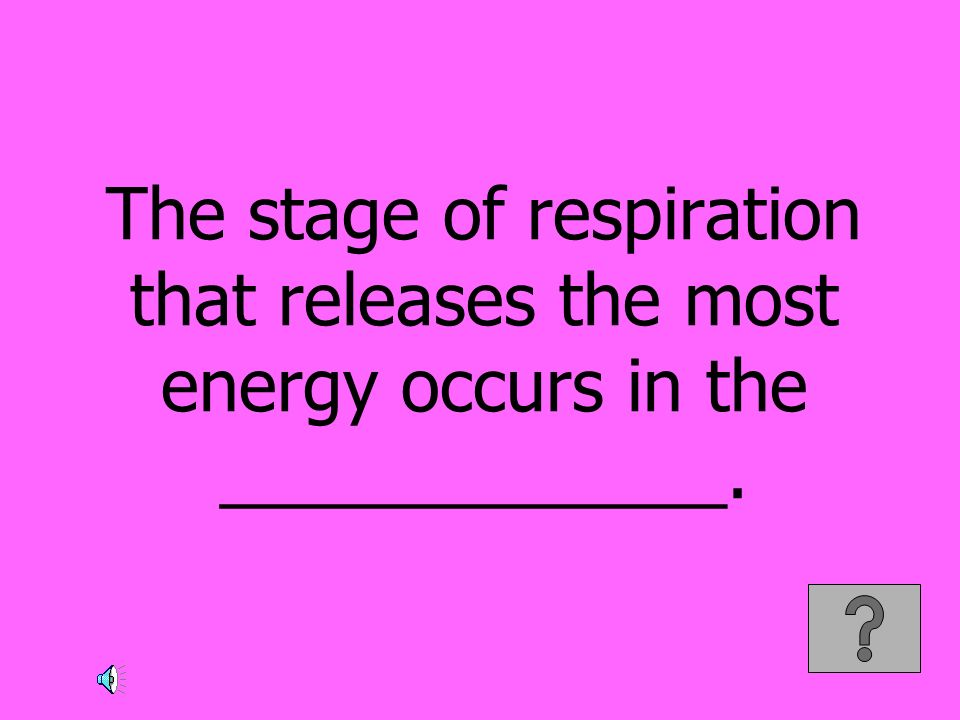 The stage of respiration that releases the most energy occurs in the _____________.