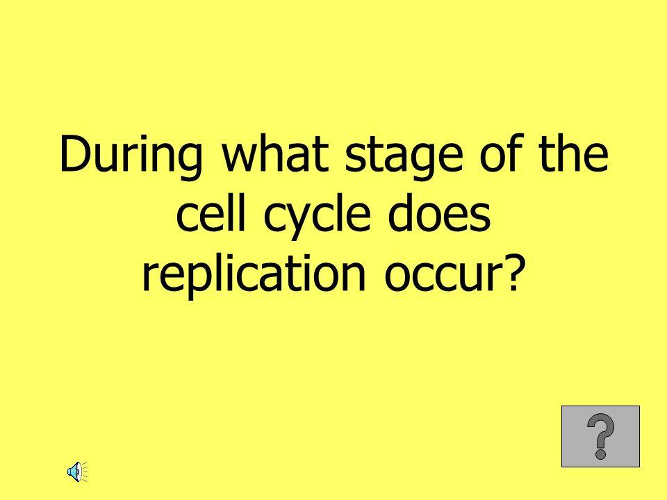 During what stage of the cell cycle does replication occur