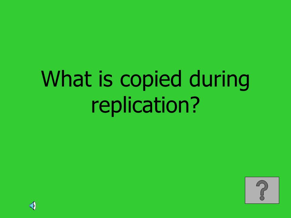 What is copied during replication