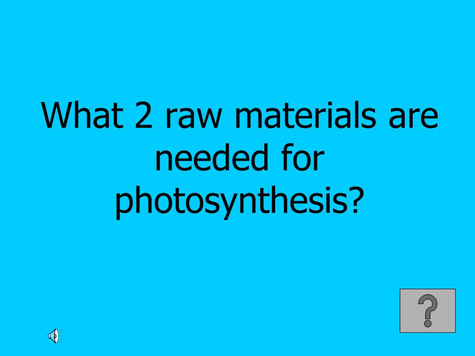 What 2 raw materials are needed for photosynthesis