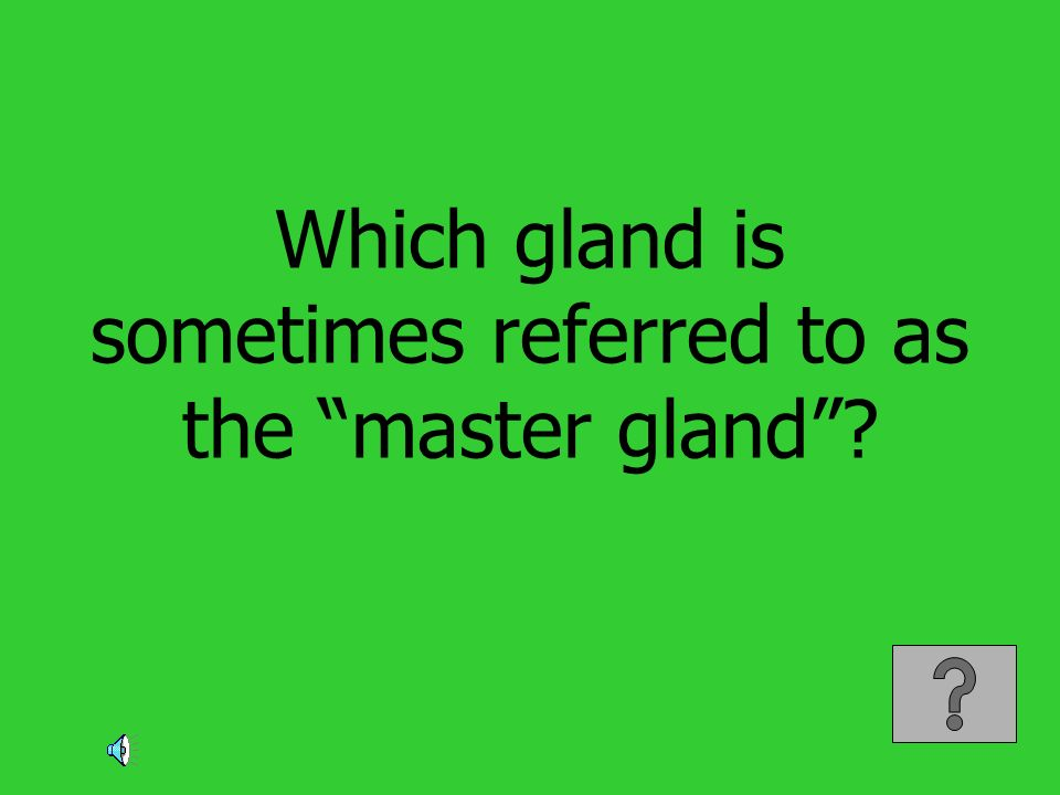 Which gland is sometimes referred to as the master gland