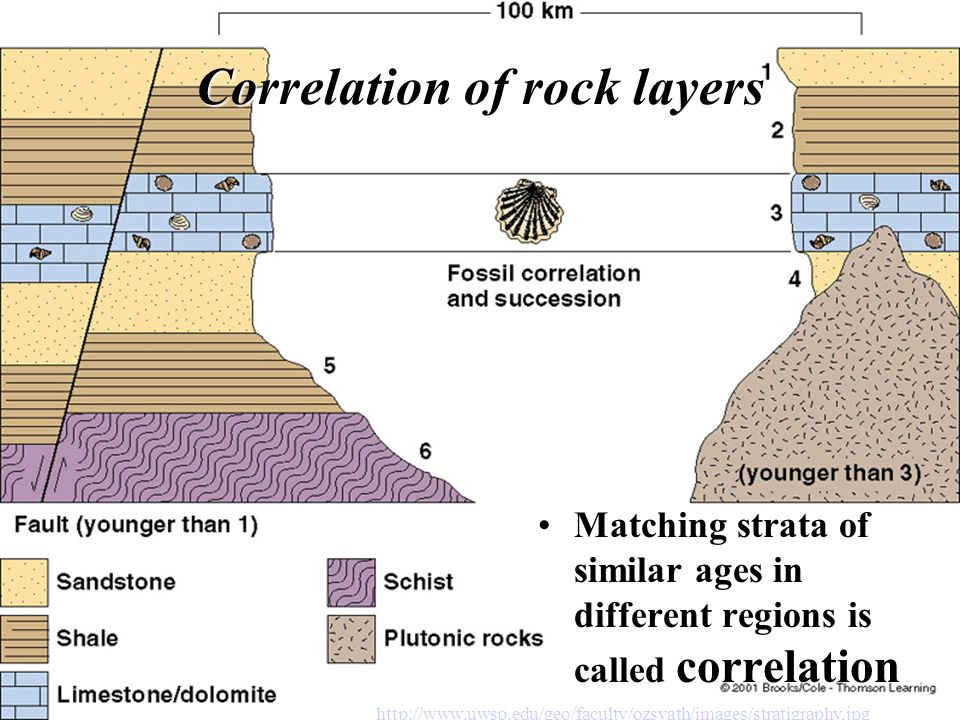 Determining Geological Ages Ppt Download
