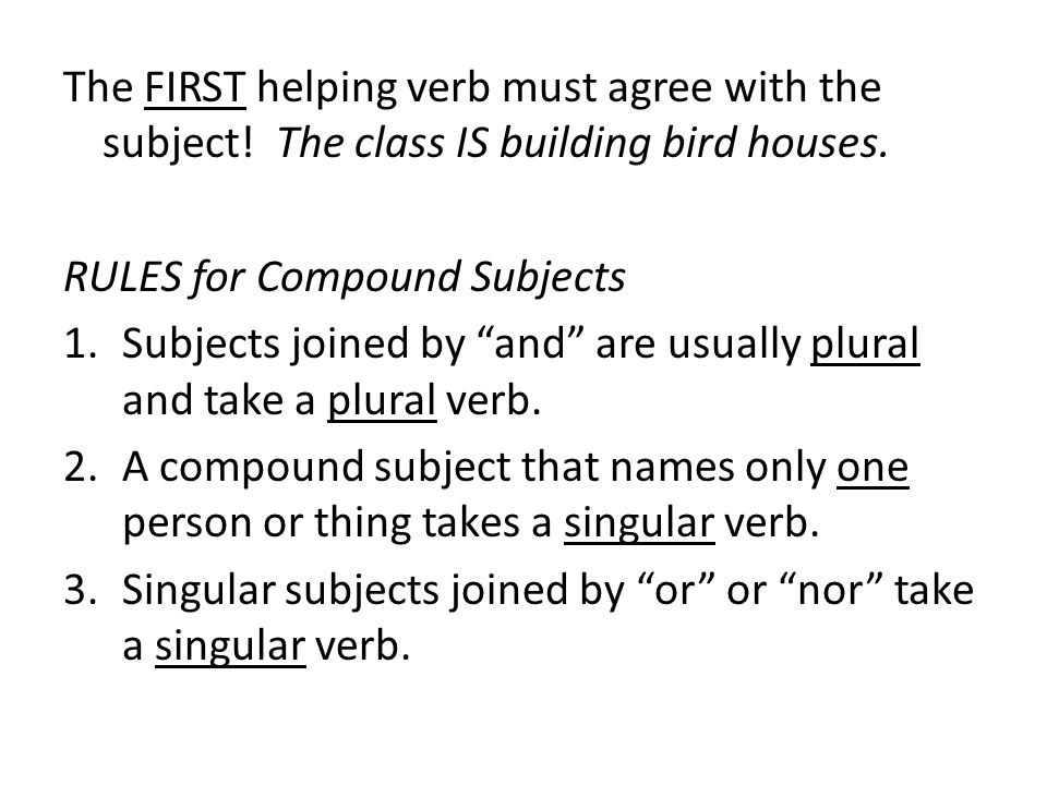 The FIRST helping verb must agree with the subject