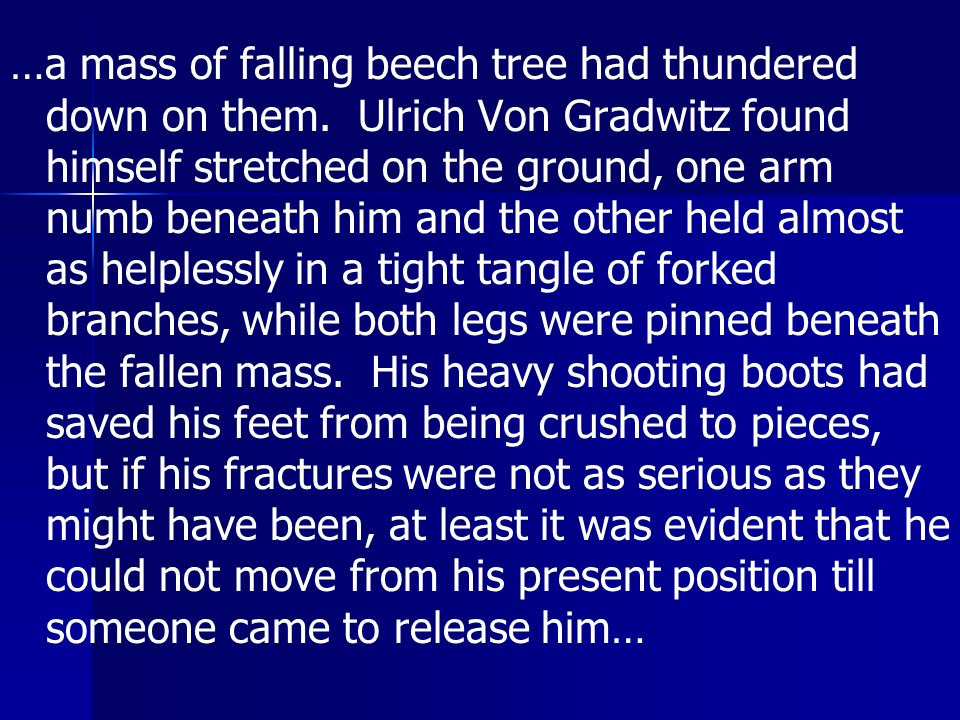 …a mass of falling beech tree had thundered down on them
