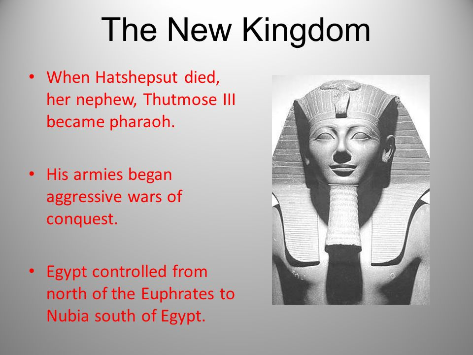 The New Kingdom When Hatshepsut died, her nephew, Thutmose III became pharaoh. His armies began aggressive wars of conquest.