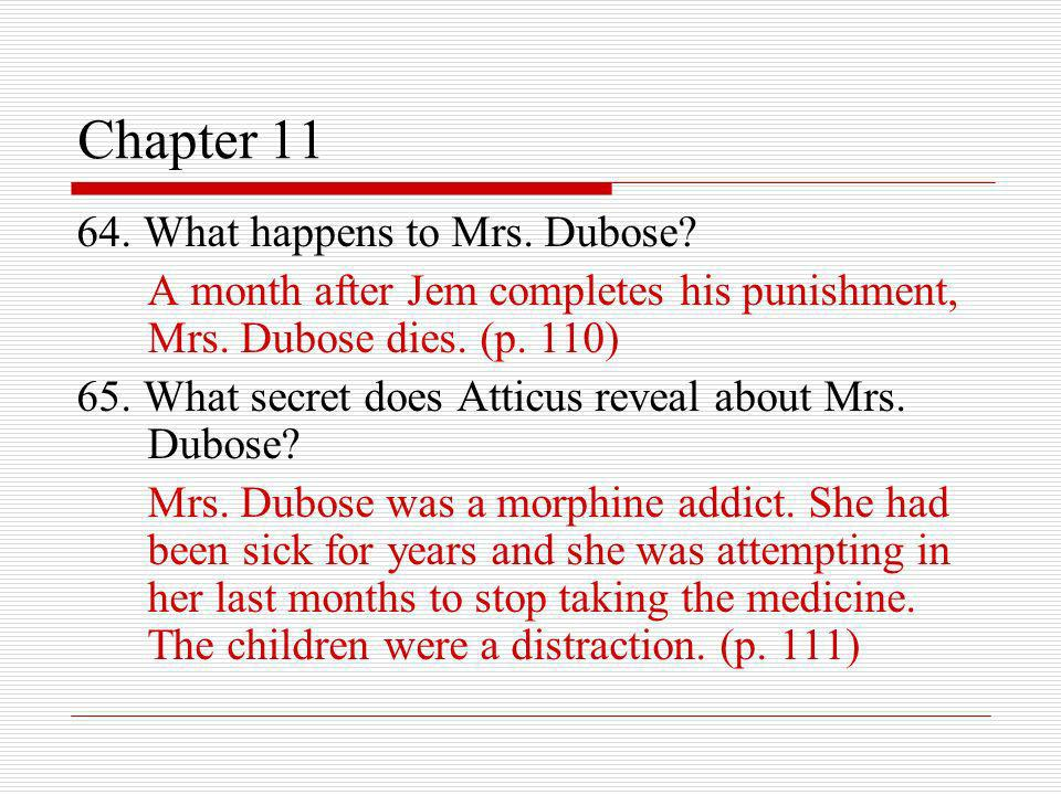 Chapter 11 64. What happens to Mrs. Dubose