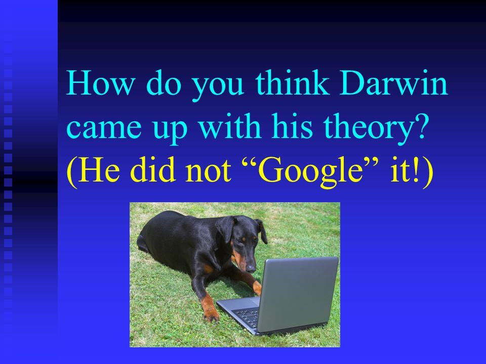 How do you think Darwin came up with his theory