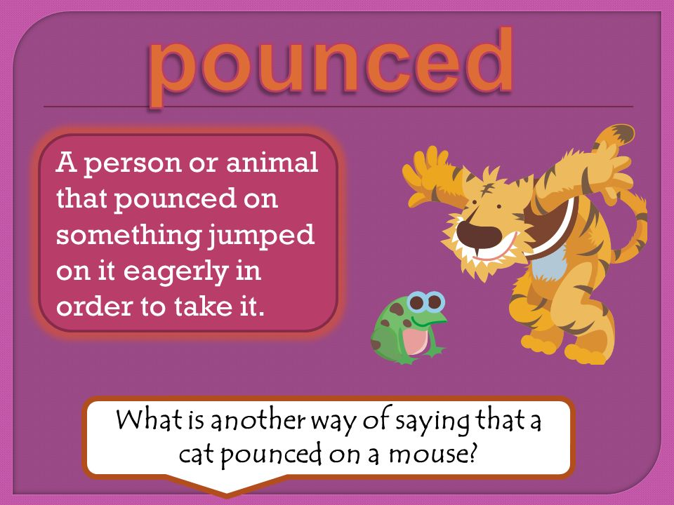 What is another way of saying that a cat pounced on a mouse