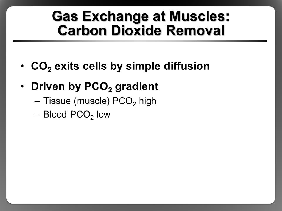Carbon Dioxide Removal Systems : The respiratory system and its regulation ppt video