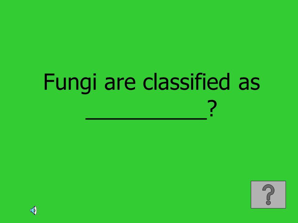 Fungi are classified as __________