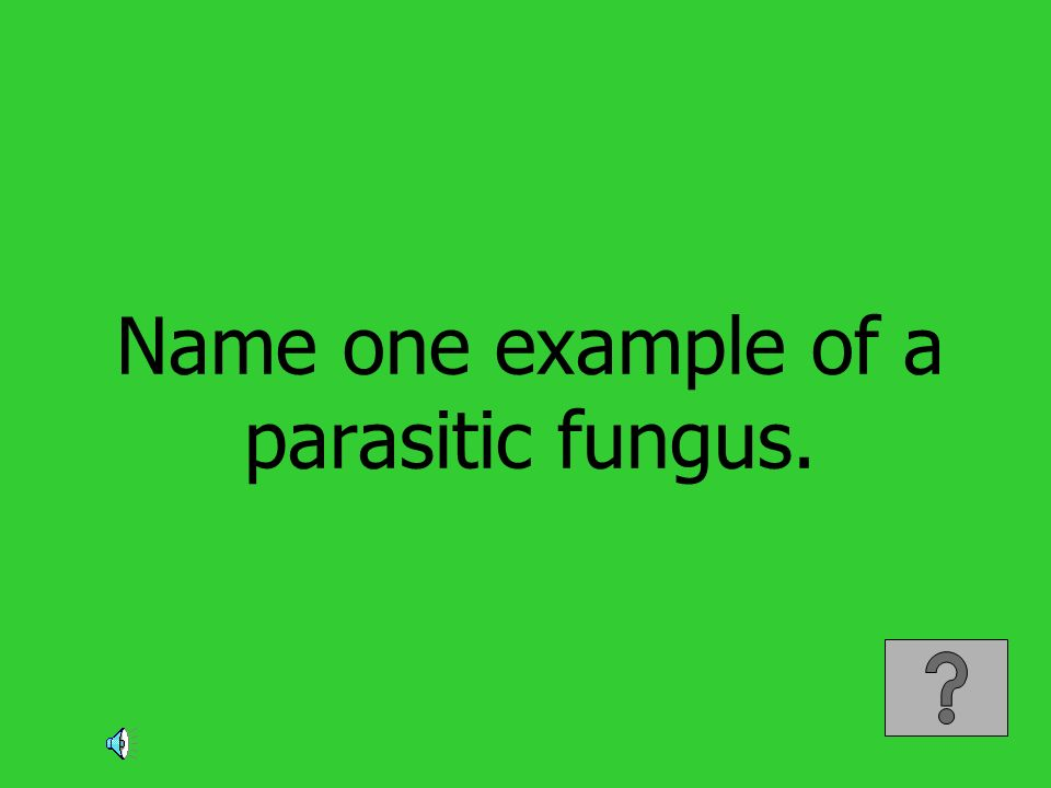 Name one example of a parasitic fungus.