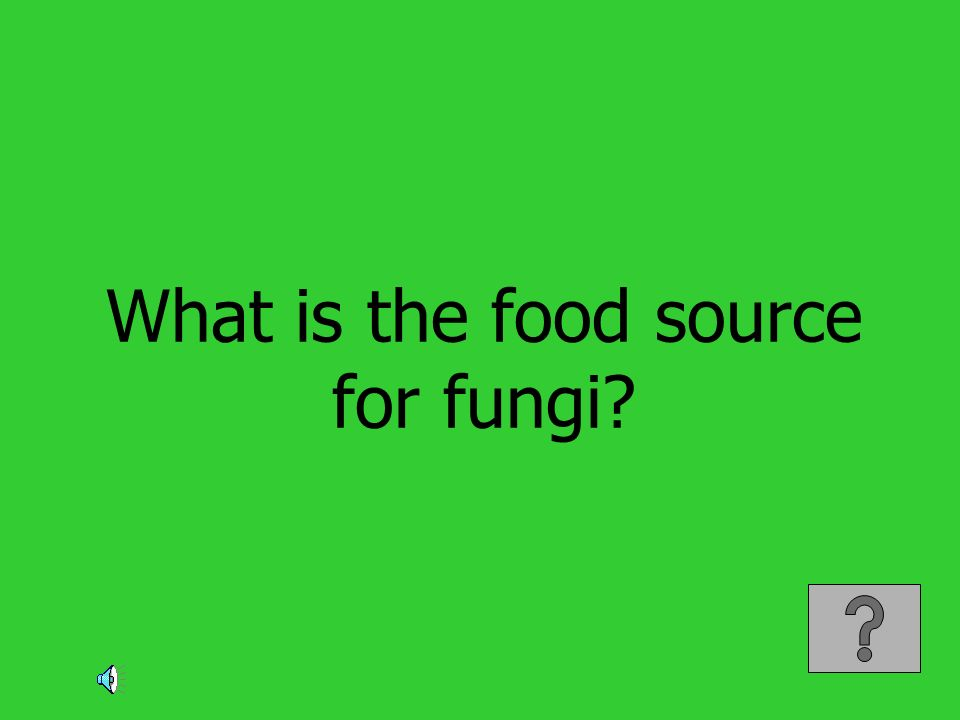 What is the food source for fungi