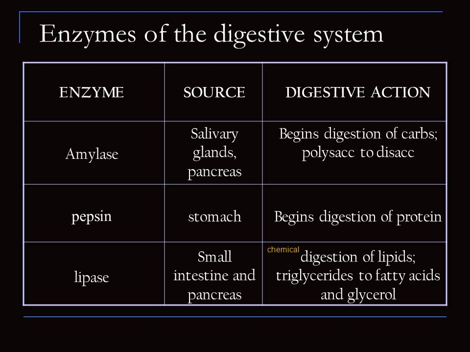 Enzymes of the digestive system