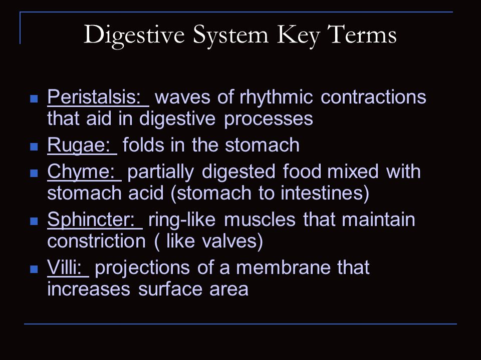 Digestive System Key Terms