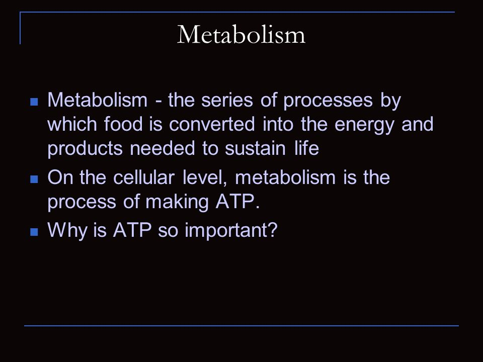 Metabolism Metabolism - the series of processes by which food is converted into the energy and products needed to sustain life.