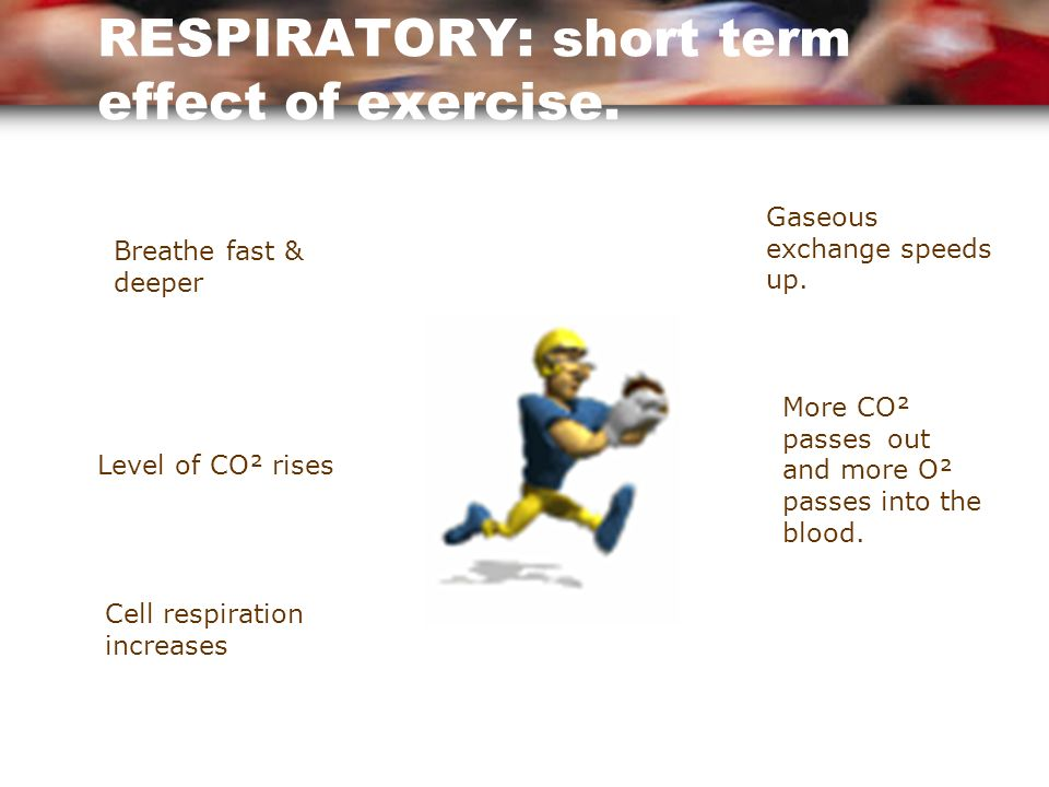 The short term effects of exercise