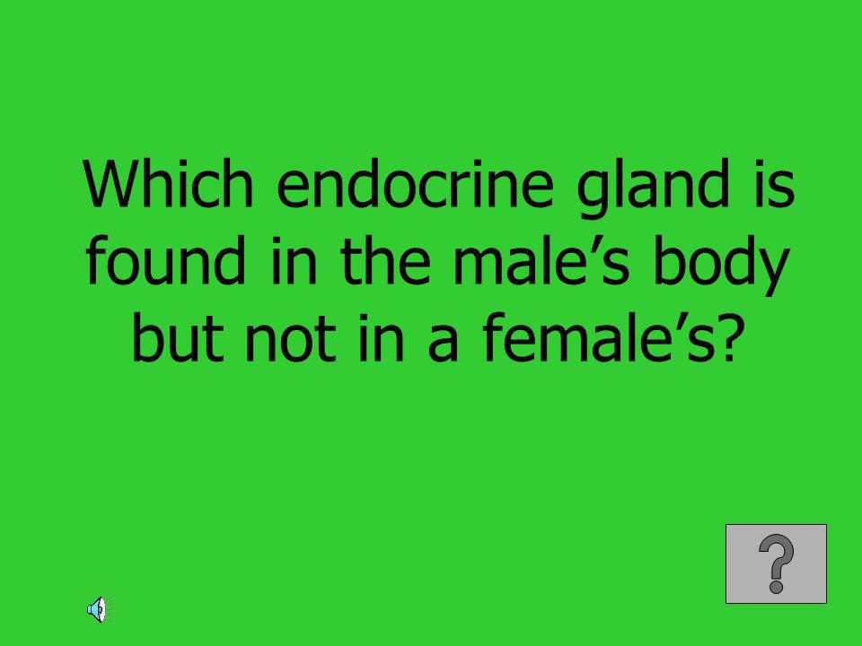 Which endocrine gland is found in the male's body but not in a female's