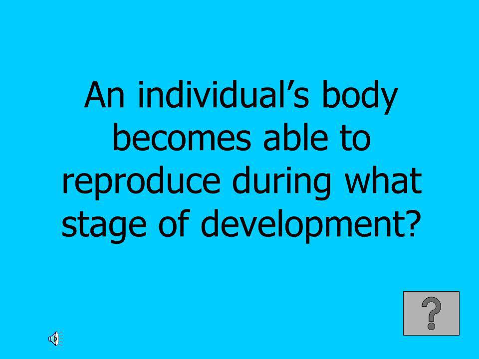 An individual's body becomes able to reproduce during what stage of development