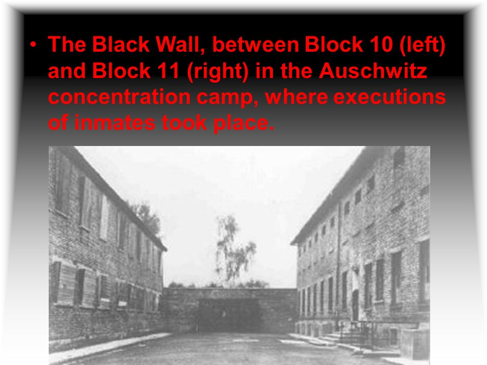 The Black Wall, between Block 10 (left) and Block 11 (right) in the Auschwitz concentration camp, where executions of inmates took place.