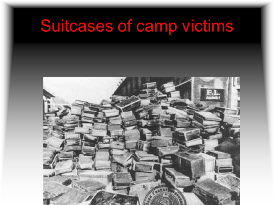 Suitcases of camp victims