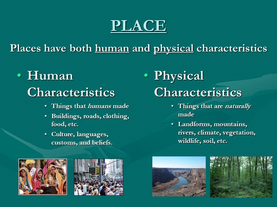 the physical characteristics of a river essay Physical characteristics: separated from other regions by mountains and extensive wetlands is the yangzi (yangtze or changjiang-long river) its tributaries and lakes are the focus of life and economics in the valley summers tend to be hot, humid, and rainy along the river, while winters are brief but cold.
