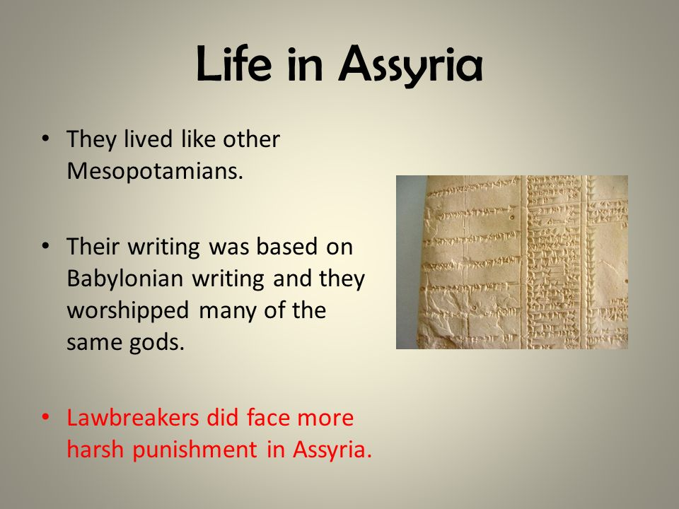 Life in Assyria They lived like other Mesopotamians.