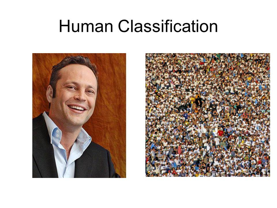 Human Classification Domain: Eukarya Kingdom: Animalia