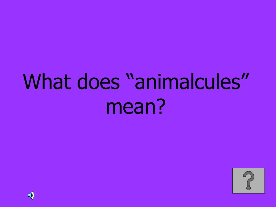 What does animalcules mean