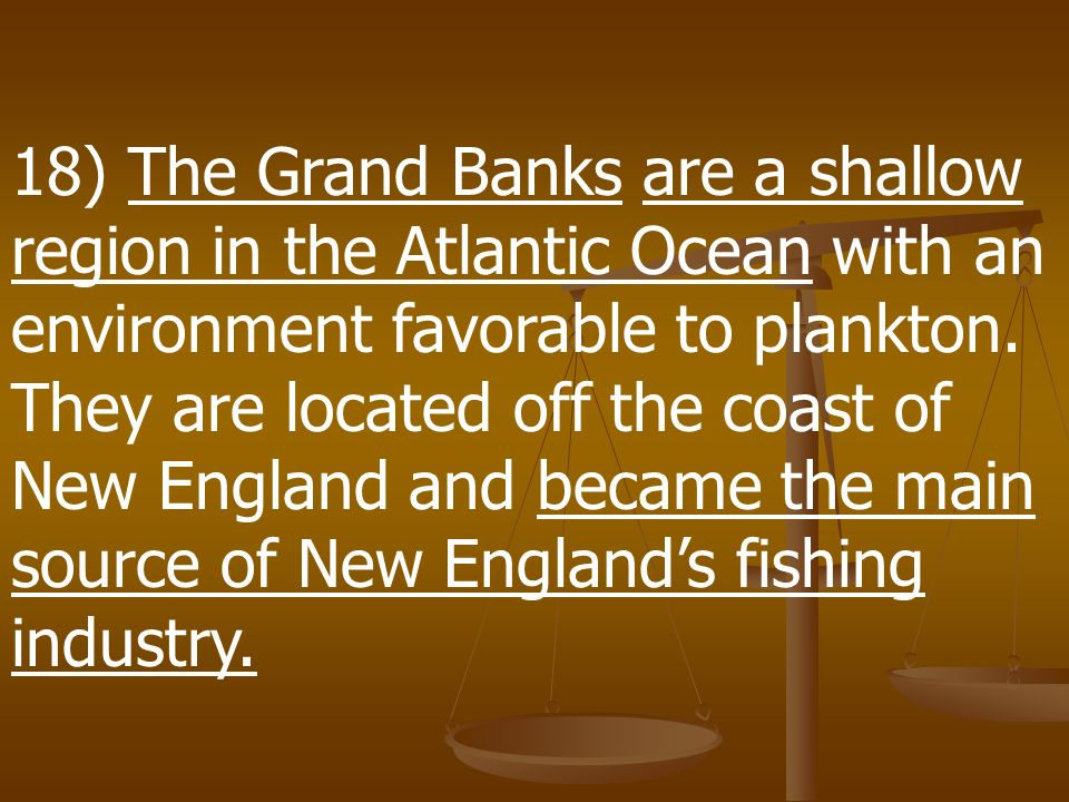 18) The Grand Banks are a shallow region in the Atlantic Ocean with an environment favorable to plankton.