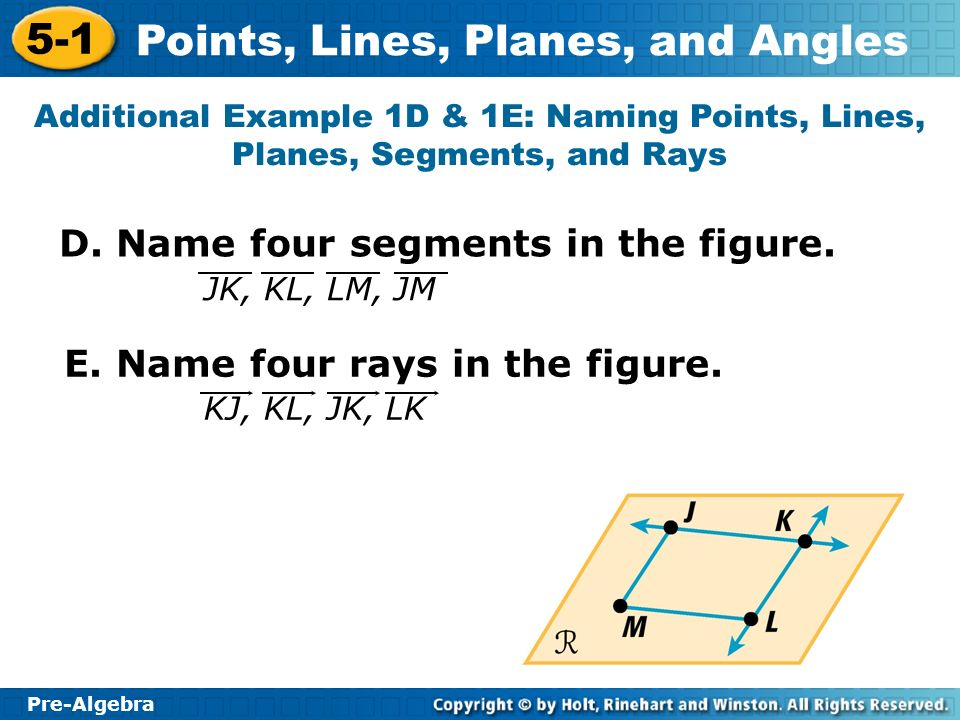 D. Name four segments in the figure.