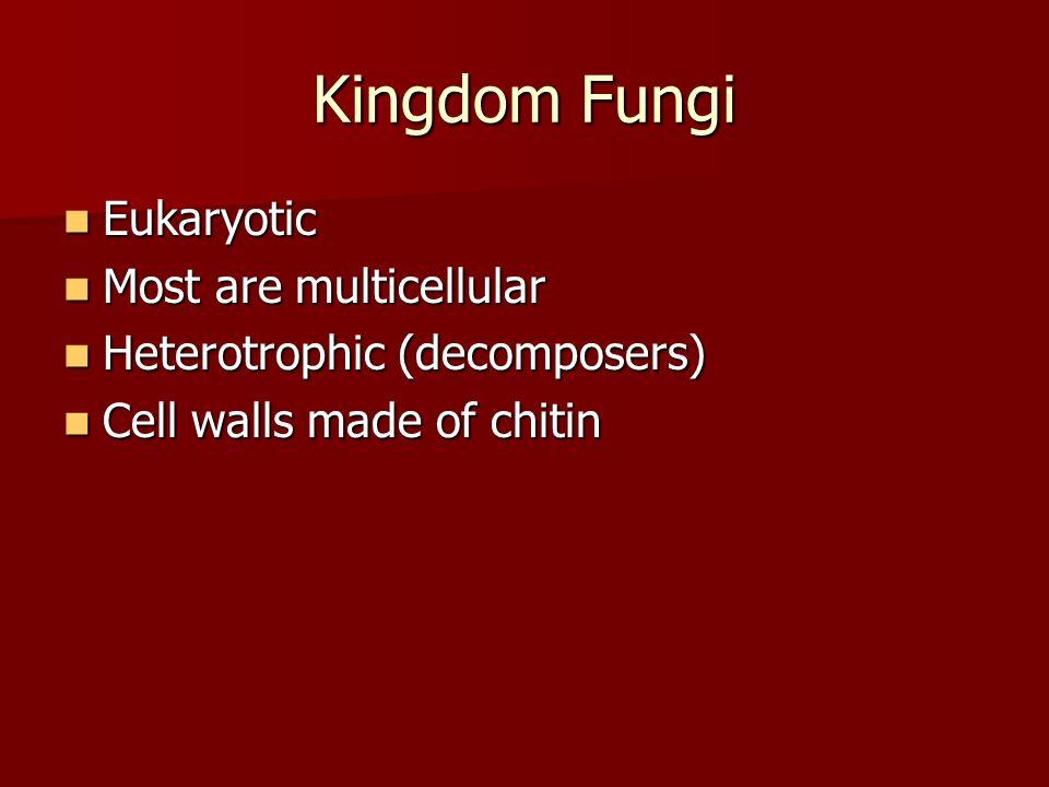 Kingdom Fungi Eukaryotic Most are multicellular