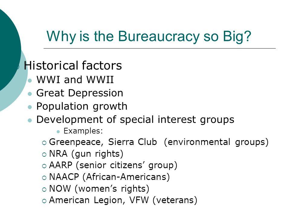 Why is the Bureaucracy so Big
