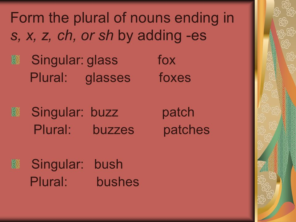 Form the plural of nouns ending in s, x, z, ch, or sh by adding -es