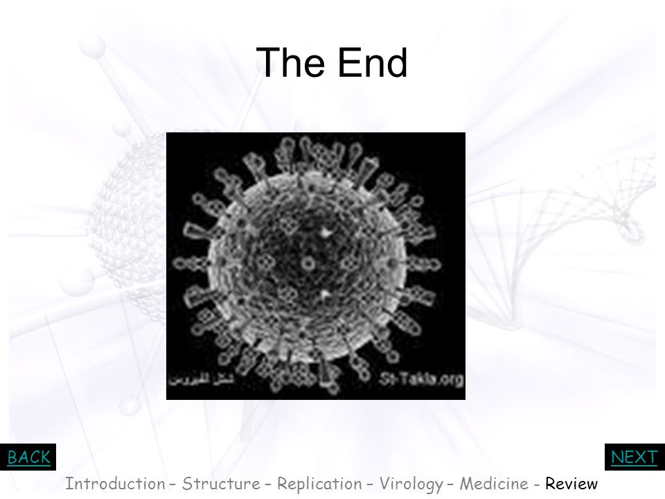 Introduction – Structure – Replication – Virology – Medicine - Review