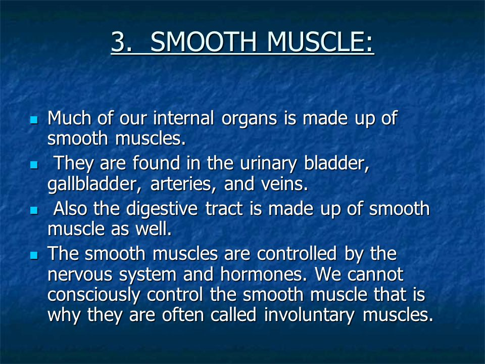 3. SMOOTH MUSCLE: Much of our internal organs is made up of smooth muscles.