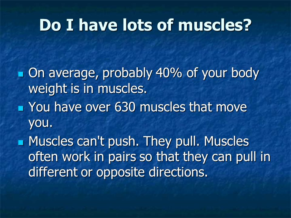 Do I have lots of muscles