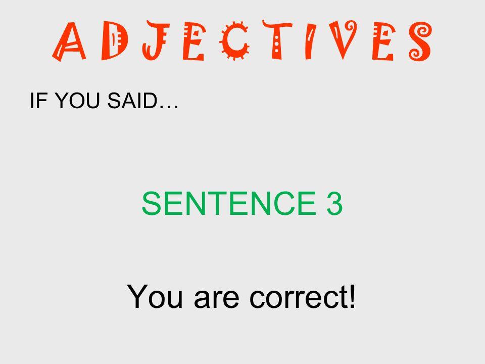 A D J E C T I V E S IF YOU SAID… SENTENCE 3 You are correct!