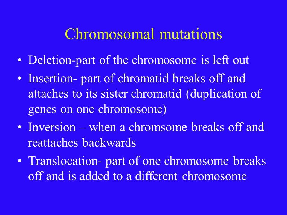Chromosomal mutations