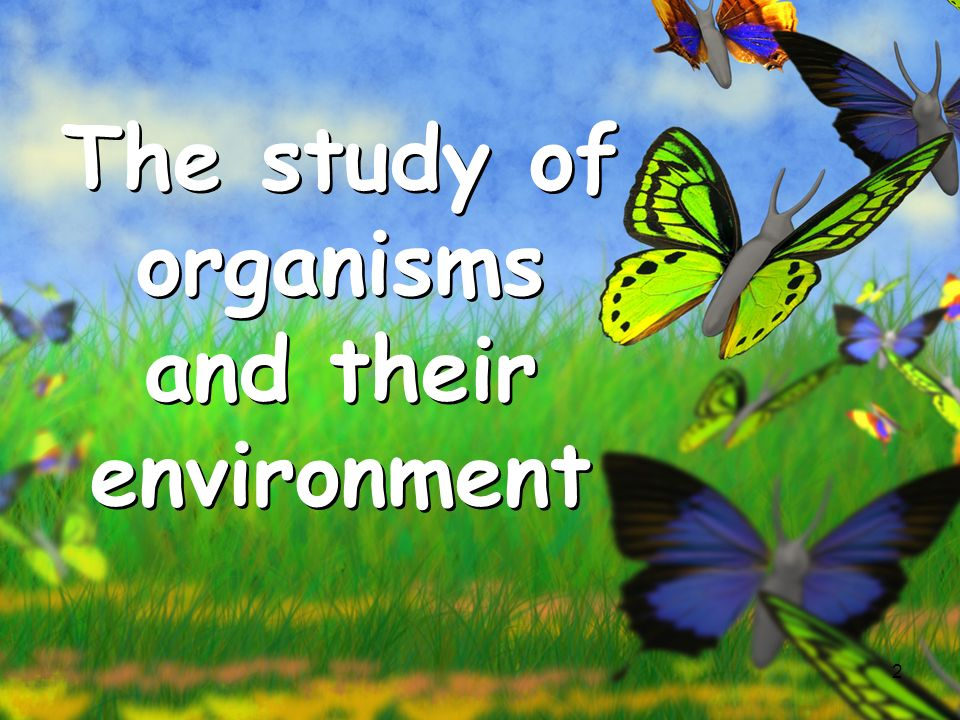 The study of organisms and their environment
