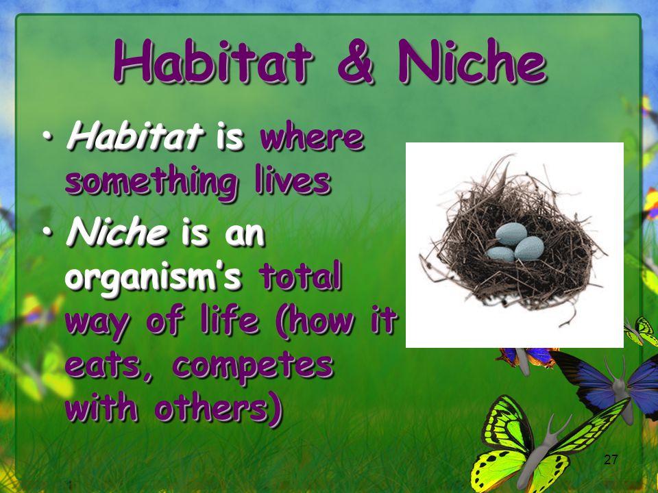 Habitat & Niche Habitat is where something lives