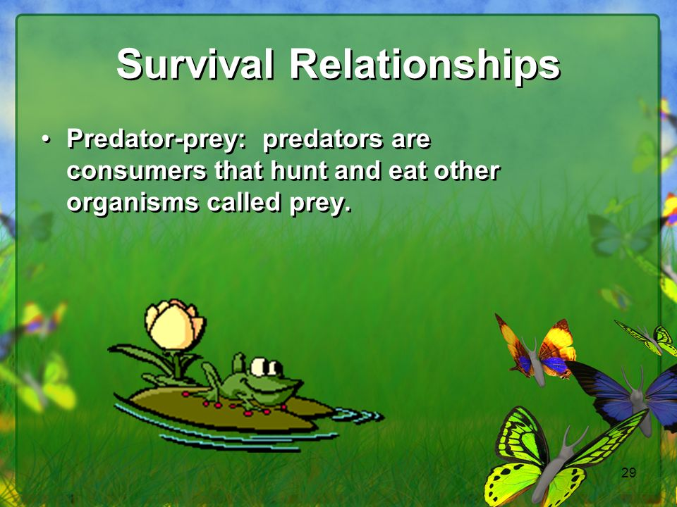 Survival Relationships