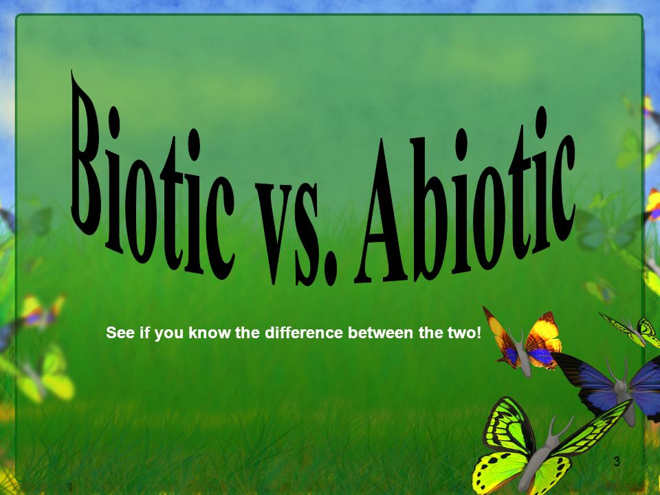 Biotic vs. Abiotic See if you know the difference between the two!
