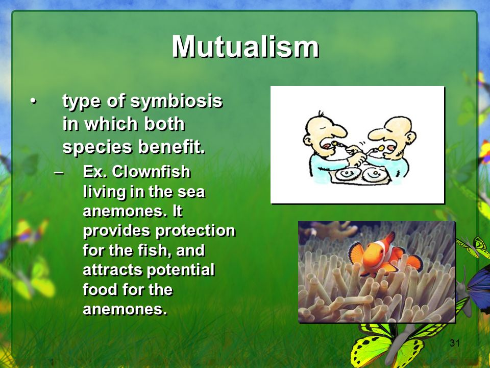 Mutualism type of symbiosis in which both species benefit.