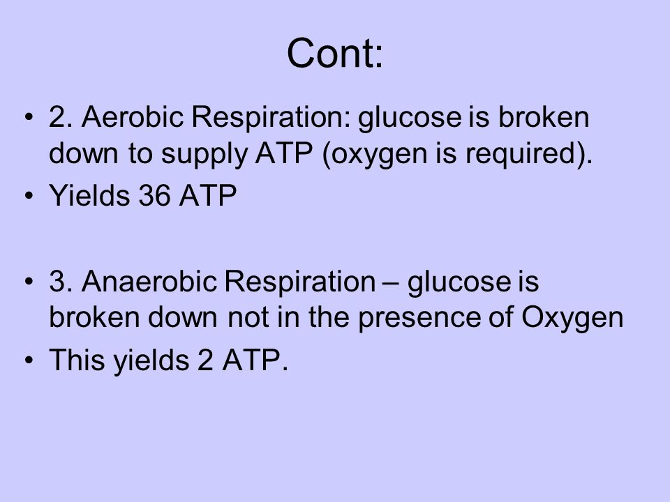 Cont: 2. Aerobic Respiration: glucose is broken down to supply ATP (oxygen is required). Yields 36 ATP.