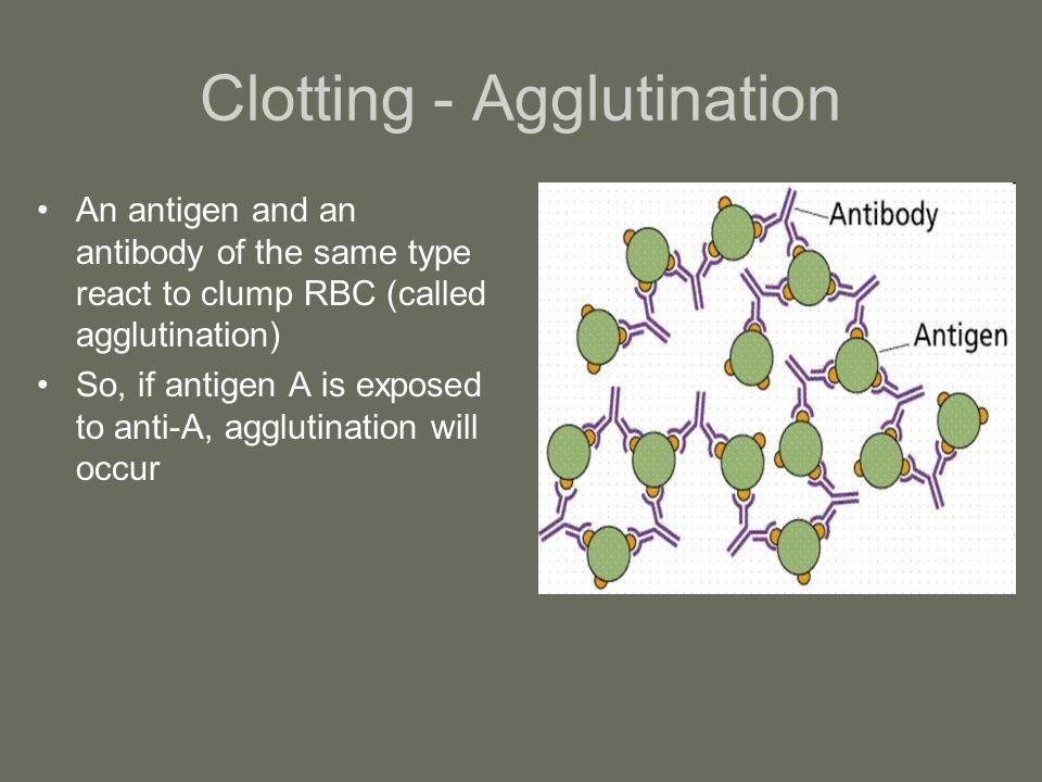 Clotting - Agglutination