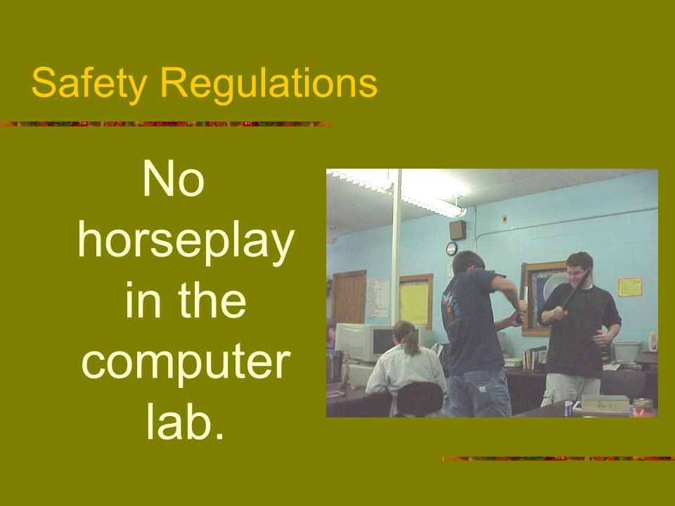No horseplay in the computer lab.