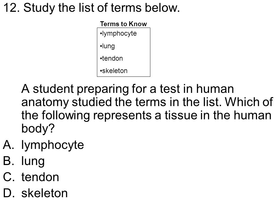 12. Study the list of terms below.