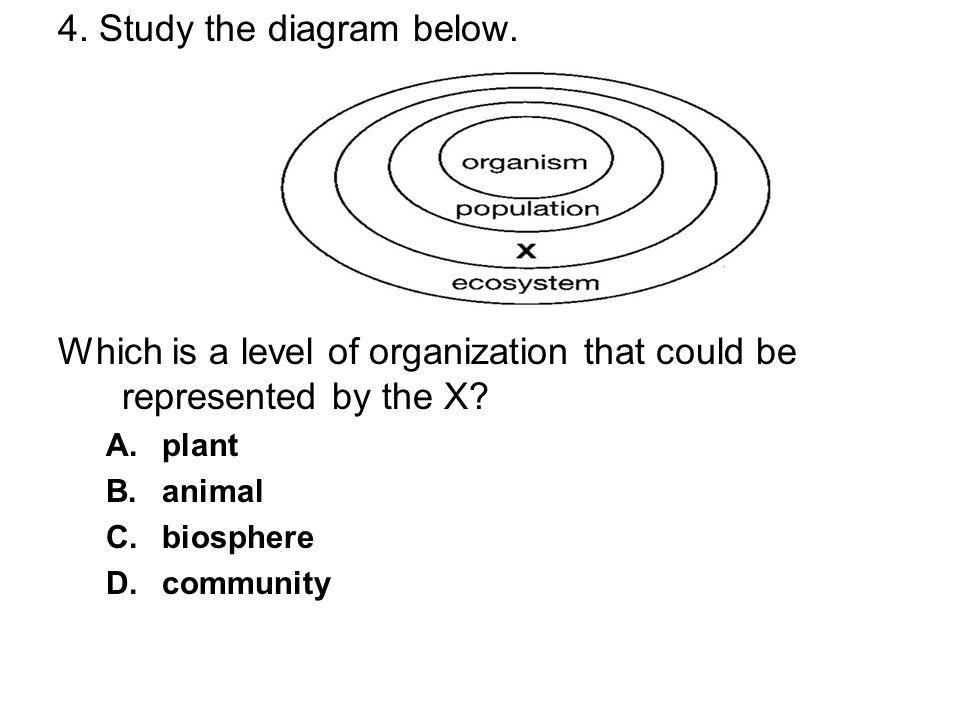 4. Study the diagram below.