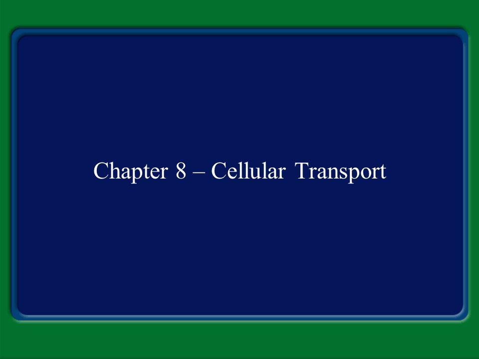 Chapter 8 – Cellular Transport